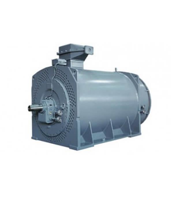 Medium Voltage Electric Motors